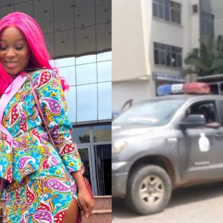 police-arrest-efia-odo,-other-leaders-of-fix-the-country-campaign